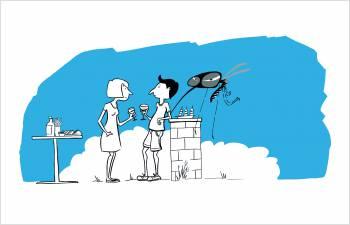 Campagne de prévention contre le moustique tigre
