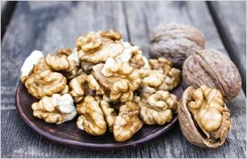 Broye, Pied du Jura: valorisation de la filière de production de noix